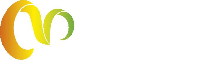 MMD.NET